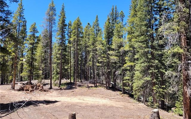 Tbd Forest Service Road 406 - photo 15