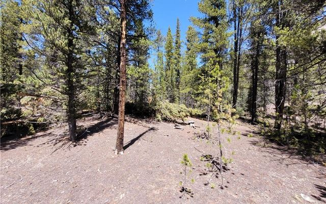 Tbd Forest Service Road 406 - photo 16