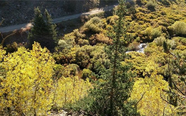 Tbd Forest Service Road 406 - photo 20