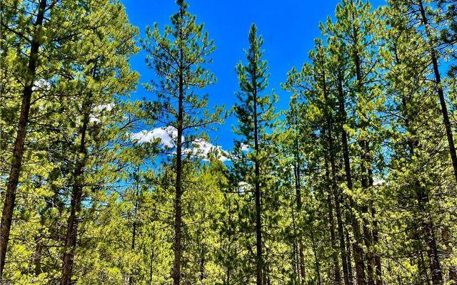 198 Spruce Drive - photo 2