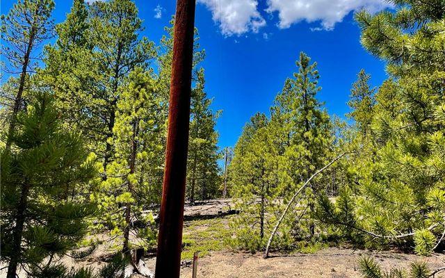 198 Spruce Drive - photo 6