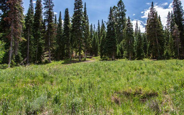 750 Granite Springs Trail - photo 1
