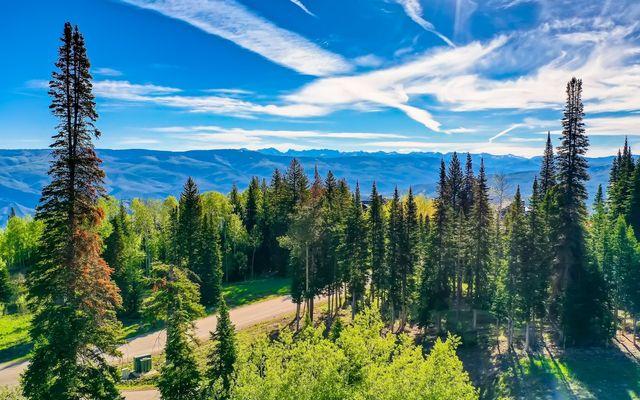 750 Granite Springs Trail - photo 13