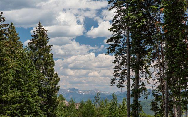 750 Granite Springs Trail - photo 2