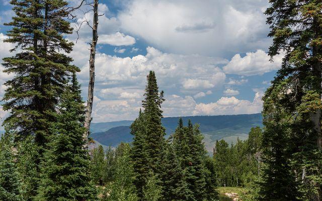750 Granite Springs Trail - photo 3
