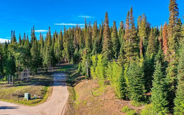 750 Granite Springs Trail - photo 7