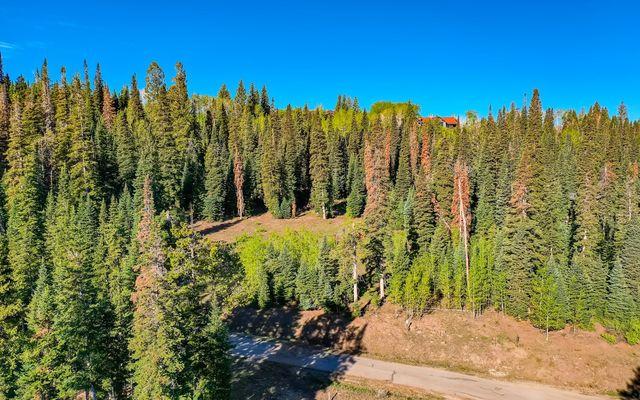 750 Granite Springs Trail - photo 8