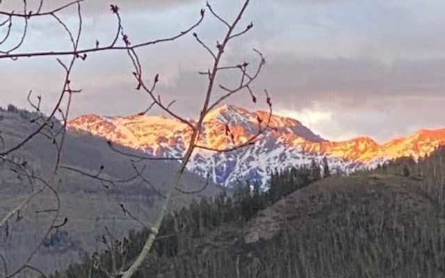 2338 Garmisch Drive B - photo 22