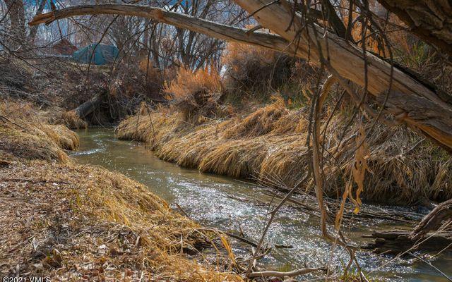 1630 Whiteriver Avenue #1640 - photo 12