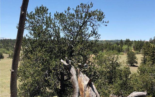 534 Breech Trail - photo 12