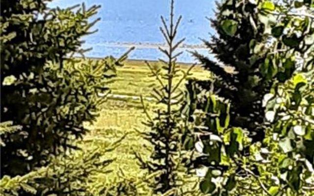 Mountain Meadows Condo 107 - photo 25