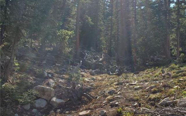 353 El Lobo Lane - photo 7