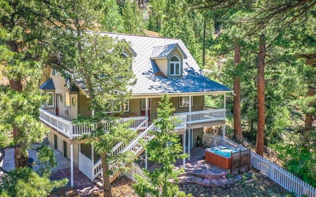 1110 Biddle St GEORGETOWN, CO 80444