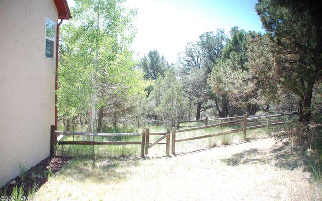 318 Mesa Drive - photo 28