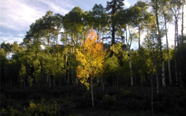 930 Ouray Trail - photo 1