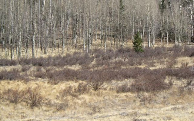 930 Ouray Trail - photo 16