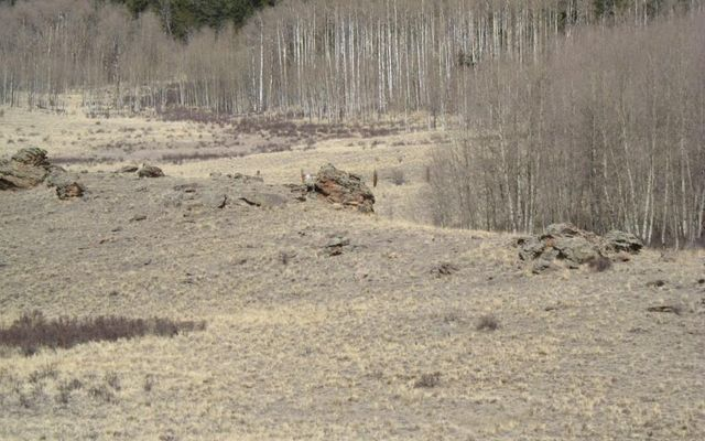 930 Ouray Trail - photo 17