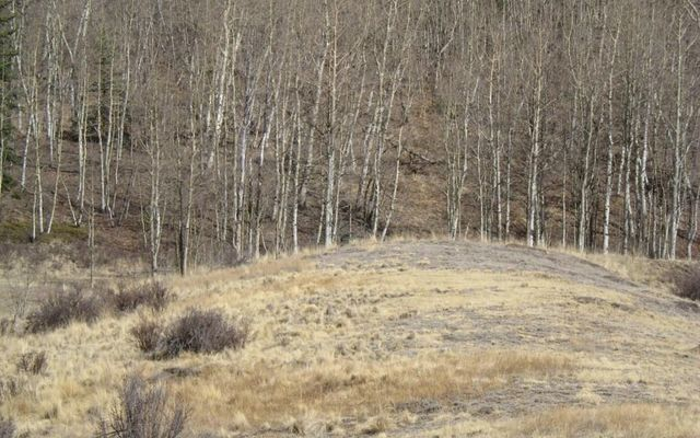 930 Ouray Trail - photo 21