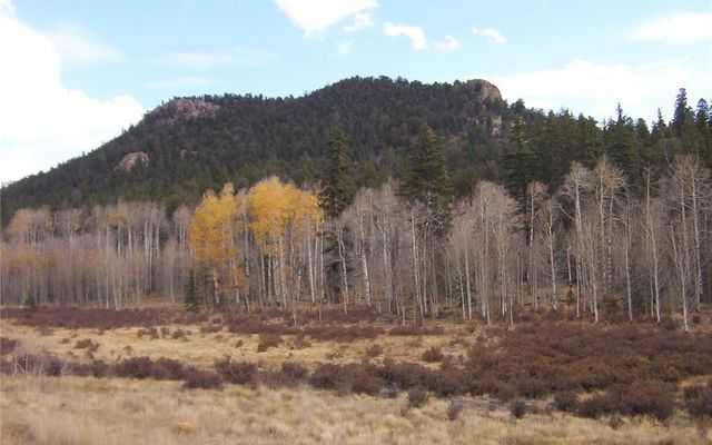 930 Ouray Trail - photo 24