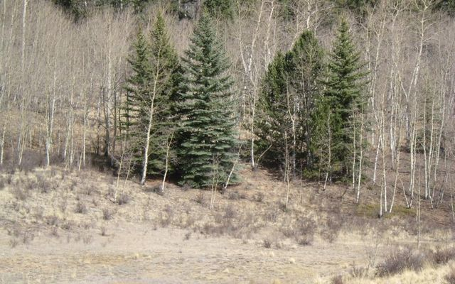 930 Ouray Trail - photo 3
