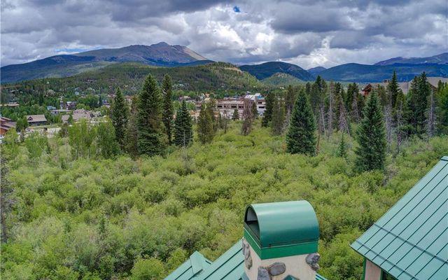 Woods At Breckenridge 110 - photo 32