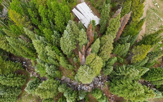 66 Conifer - photo 5