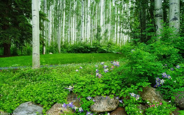 1448 Vail Valley Drive A - photo 35