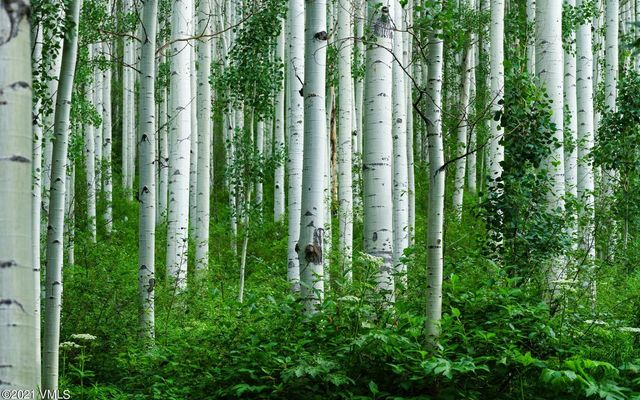 1448 Vail Valley Drive A - photo 36