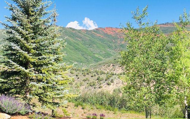 500 Redtail Ridge - photo 11