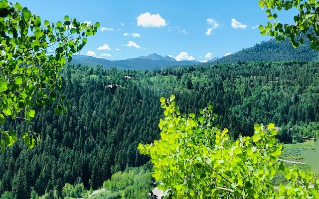 500 Redtail Ridge - photo 19