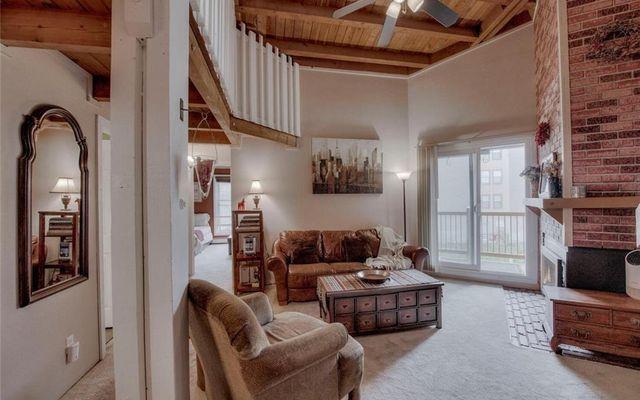 Treehouse Condo 306 - photo 3