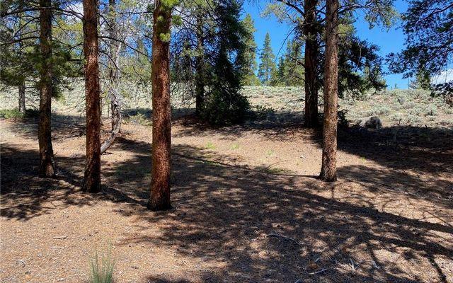123 Birch Drive - photo 1