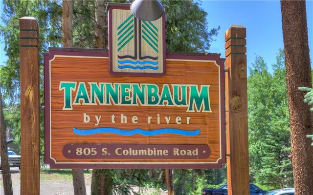 Tannenbaum By The River 302 - photo 1