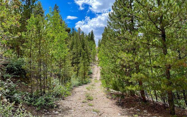 10 Mt Elbert Drive - photo 5