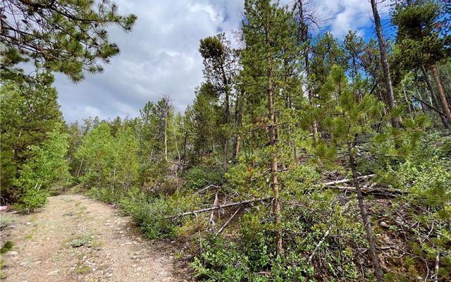 10 Mt Elbert Drive - photo 6