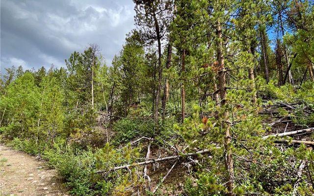 10 Mt Elbert Drive - photo 7