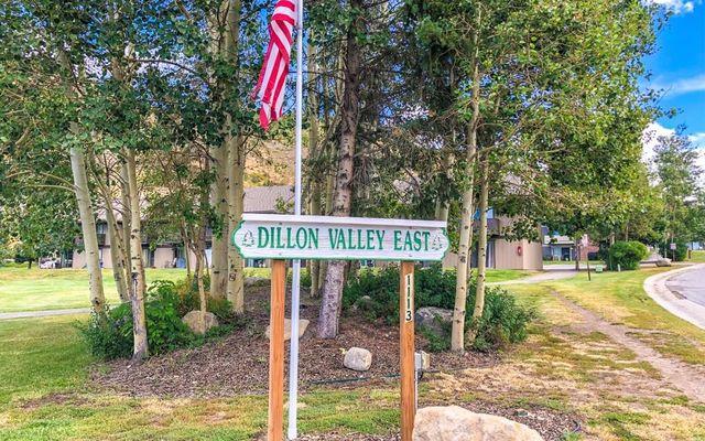 Dillon Valley East Condo 306 - photo 3