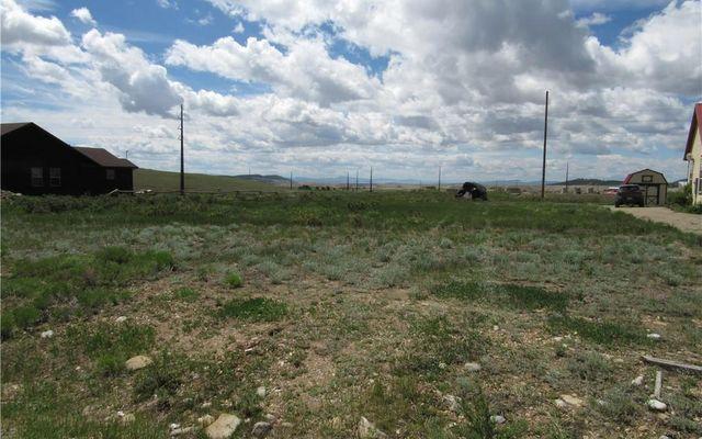 1313 Meadow Drive FAIRPLAY, CO 80440