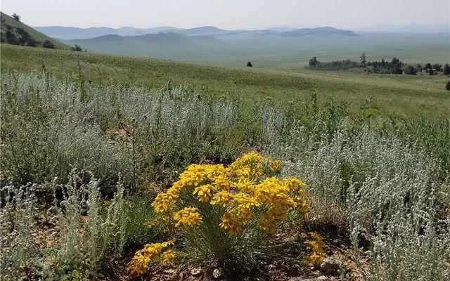 484 Elkhorn View Drive COMO, CO 80432