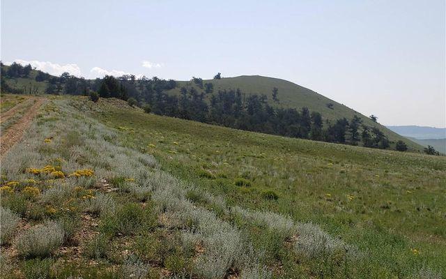 532 Elkhorn View Drive - photo 14