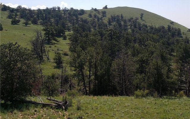 532 Elkhorn View Drive - photo 6