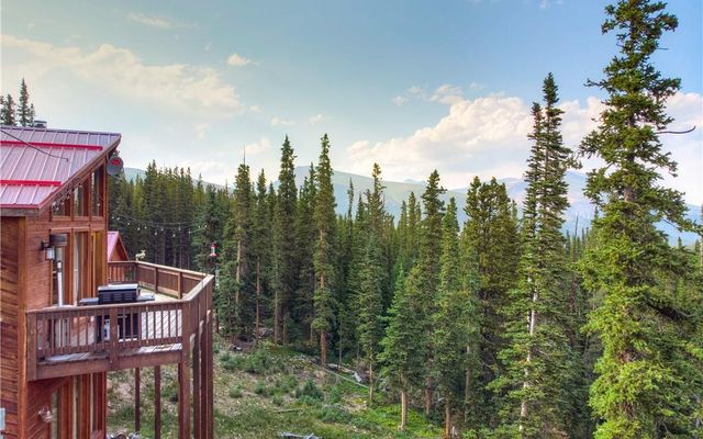 1135 Prunes Place FAIRPLAY, CO 80440