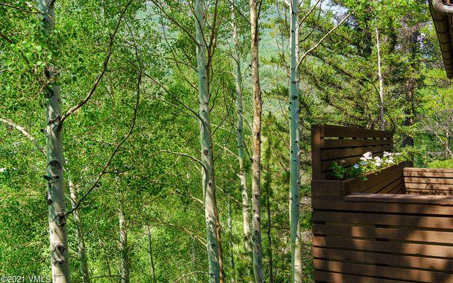 1163 Cabin Circle - photo 48