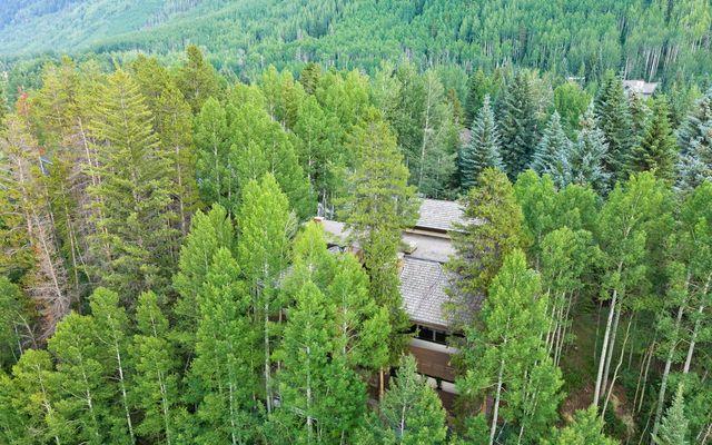 1163 Cabin Circle - photo 86