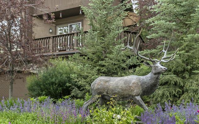 Royal Elk Villas 12 - photo 1