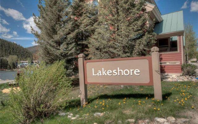 Lakeshore Condo 5&6 - photo 31