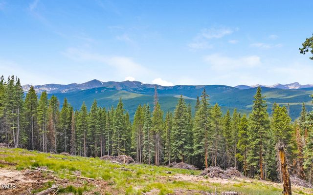 80 Taylor Hill Road Red Cliff, CO 81649