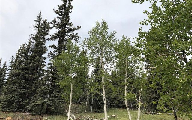 450 Teton Trail - photo 9
