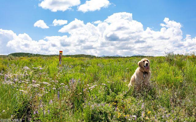 1142 Summit Trail - photo 1
