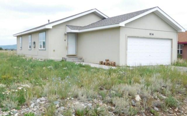 836 Trout Creek Drive FAIRPLAY, CO 80440